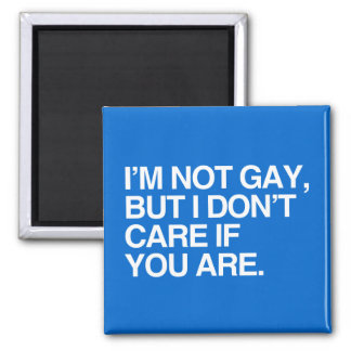 I'M NOT GAY BUT I DON'T CARE IF YOU ARE MAGNETS