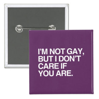 I'M NOT GAY BUT I DON'T CARE IF YOU ARE PINS