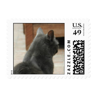 I'm Not Paying Attention To You Postage Stamps