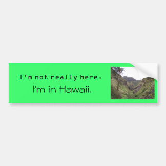 I'm not really here. I'm in Hawaii. Bumper Sticker