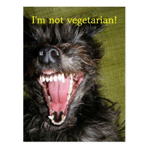 I'm not vegetarian! postcard