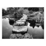 I'm Not Your Stepping Stone Photo Print