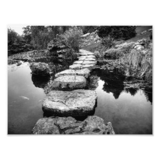 I'm Not Your Stepping Stone Art Photo