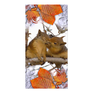 I'M NUTS ABOUT YOU! CARD
