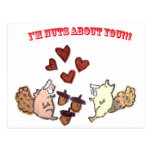 IM NUTS ABOUT YOU CARD POST CARD