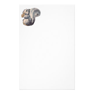 I'm Nuts Squirrel Stationary Stationery