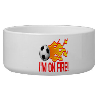 Im On Fire Dog Bowls