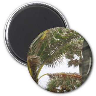 I'm on Island Time! 2 Inch Round Magnet