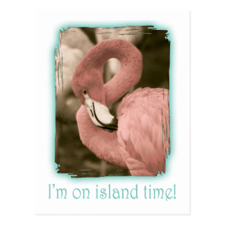I'm on Island Time Postcard