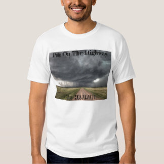 I'm On The Highway To HAIL!!!! T Shirt