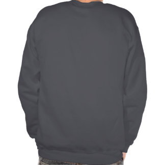 Im only outside 'cause my internet broke pullover sweatshirt