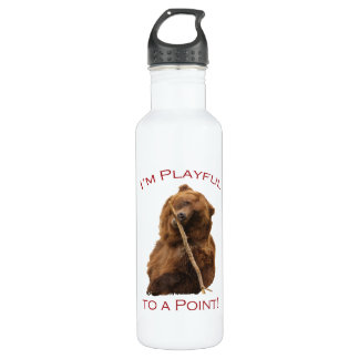I'm Playful to a Point! Stainless Steel Water Bottle