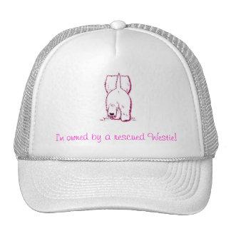 Im poseído por un westie rescatado - rosa gorra