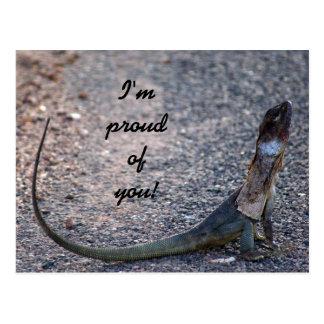 Im proud of you! Frilled dragon lizard, Australia Postcard