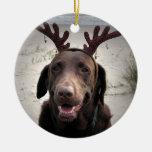I'm ready, Rudolph! Christmas Tree Ornaments