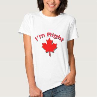 Im Right 3d Tee Shirt