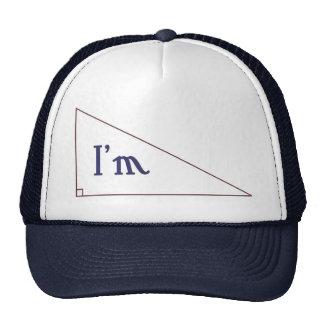 I'm right! mesh hat