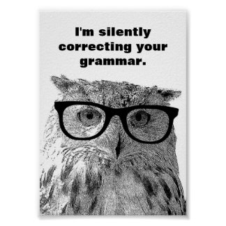 I'm silently correcting your grammar owl poster