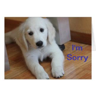 I'm Sorry apology card
