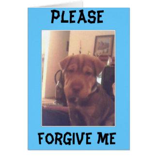im sorry greeting card