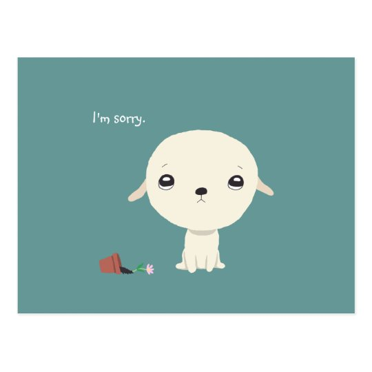 I'm Sorry Card Cute Puppy Eyes Sorry Postcard | Zazzle.com