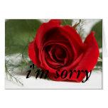 """""""I'm Sorry"""" Card Design1"""