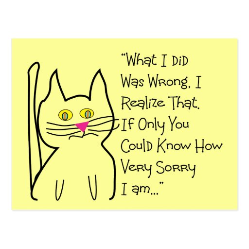 """""""I'm Sorry"""" Greeting Cards--Cat Design Post Card"""