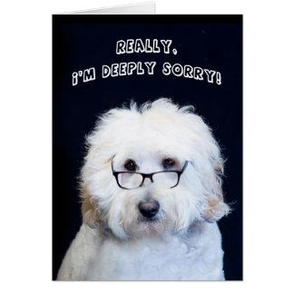 I'M SORRY - HUMOR W/DOG/BLACK-RIM GLASSES CARD