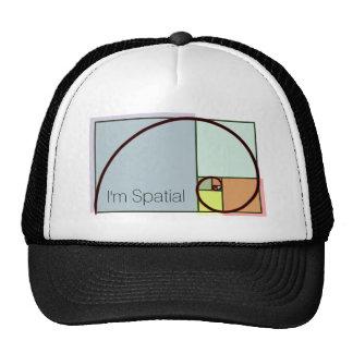 I'm Spatial Trucker Hat