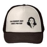 I'm straight but I vote pro-gay Mesh Hats