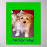 I'm Super Dog! Poster