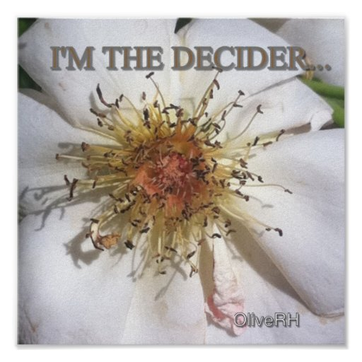 I'M THE DECIDER... POSTER