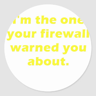 Im the One Your Firewall Warned you About Classic Round Sticker