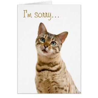 I'm very sorry, please forgive me card
