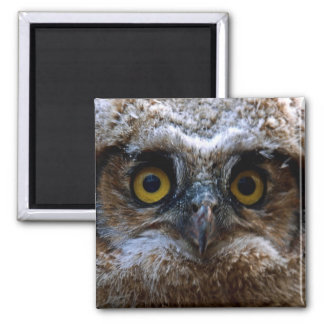I'm Watching You! 2 Inch Square Magnet