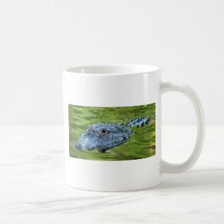 I'm watching you mug