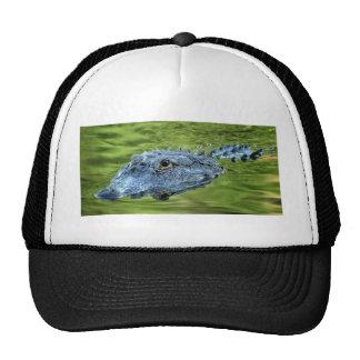I'm watching you trucker hat