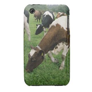 ima28991 Case-Mate iPhone 3 cobertura