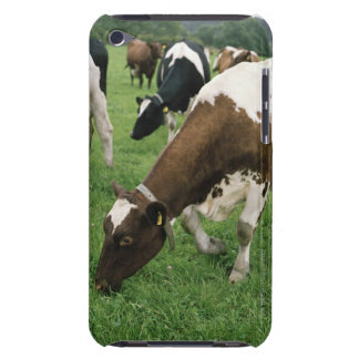 ima28991 Case-Mate iPod touch case