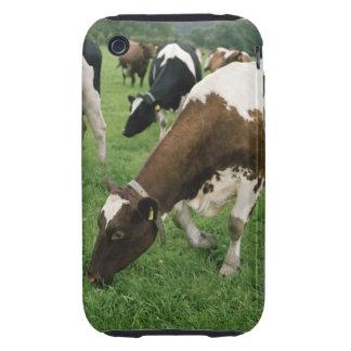 ima28991 iPhone 3 tough cover