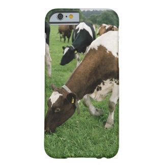 ima28991 iPhone 6 case