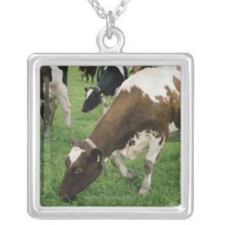 ima28991 necklaces