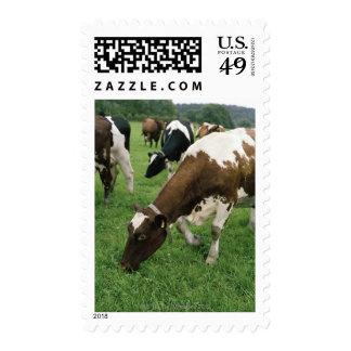 ima28991 postage stamps