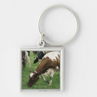 ima28991 Silver-Colored square keychain