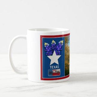 IMA-TXN Texas Orange County mug