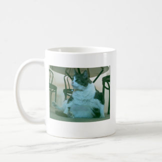 IMAG0173, IMAG0086, quack Classic White Coffee Mug