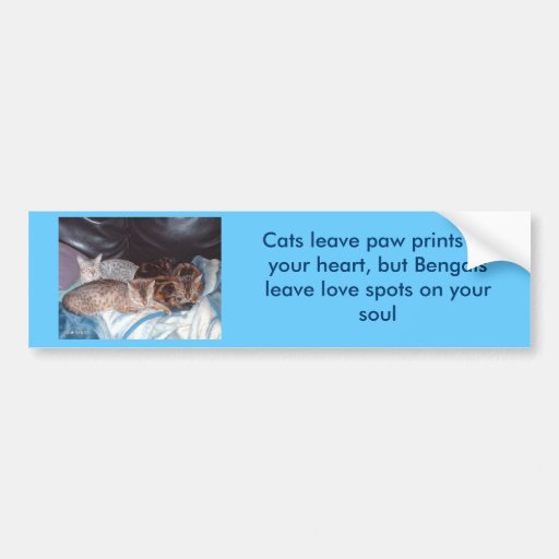 imag0310, Cats leave paw prints on your heart, ... Car Bumper Sticker