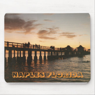 image0-8, NAPLES FLORIDA Mouse Pad