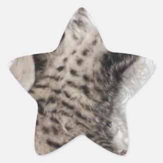 image (9).jpeg star sticker
