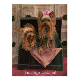 Image Consultant Post Card